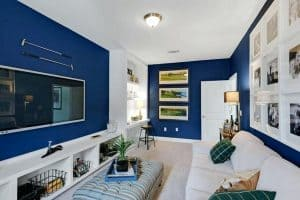 blue-and-black-living-room-decorating-ideas-light-white-brown-alluring-walls-with-surpris
